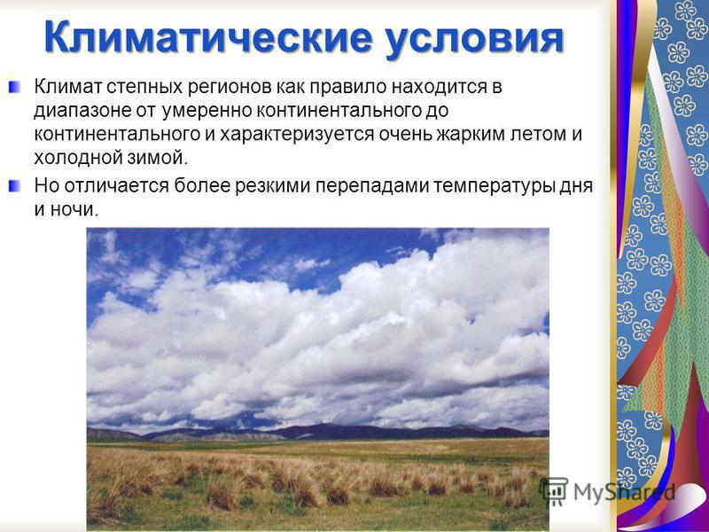 Степи особенно распространены в Центральной Евразии, на территории Российской Федерации, и тд Степи в России расположены южнее и образуют широтную зону, постепенно спускающуюся к югу, где она полно представлена в Казахстане и Монголии. В Европейской
