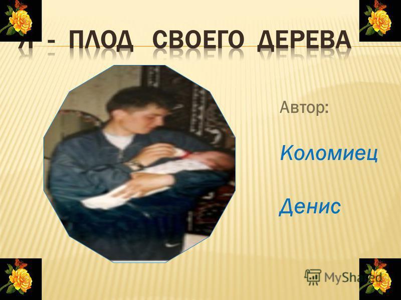 Автор: Коломиец Денис