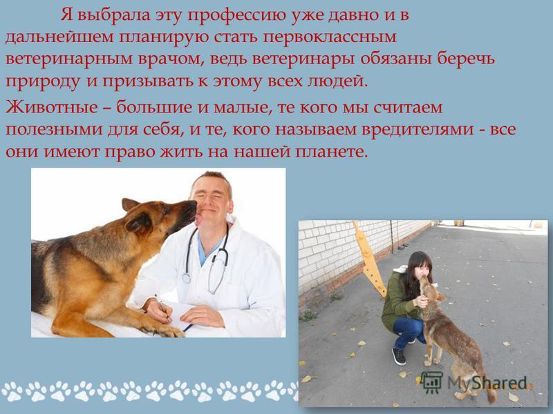 Я выбрала эту профессию уже давно и в дальнейшем планирую стать первоклассным ветеринарным врачом, ведь ветеринары обязаны беречь природу и призывать к этому всех людей. Животные – большие и малые, те кого мы считаем полезными для себя, и те, кого на