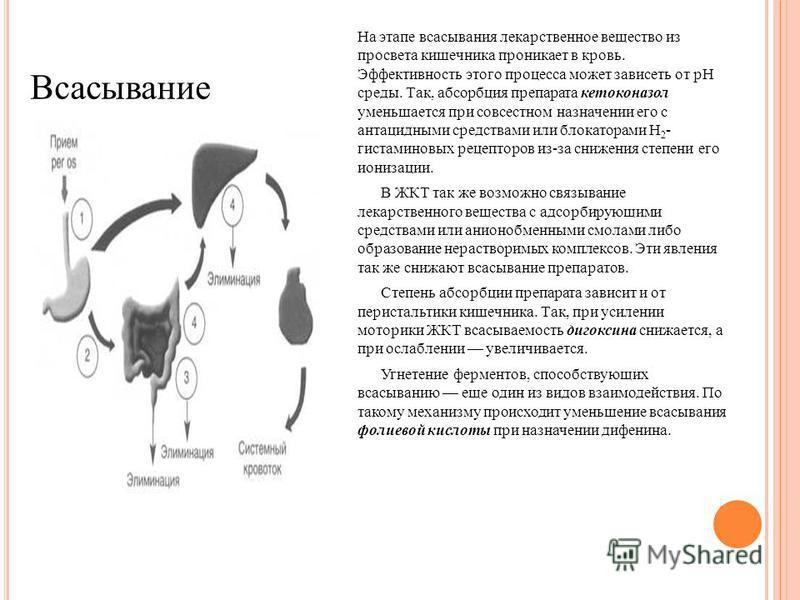 На этапе всасывания лекарственное вещество из просвета кишечника проникает в кровь. Эффективность этого процесса может зависеть от pH среды. Так, абсорбция препарата кетоконазол уменьшается при совместном назначении его с антацидными средствами или б