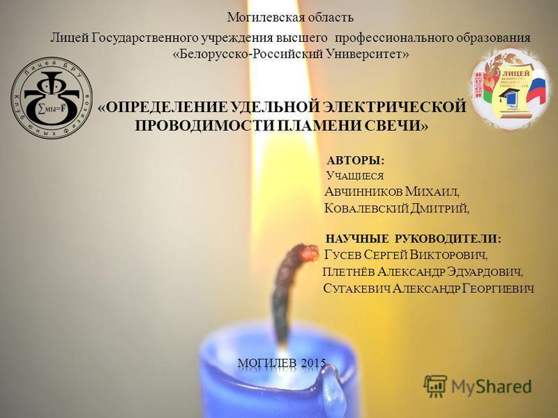 Могилевская область Лицей Государственного учреждения высшего профессионального образования «Белорусско-Российский Университет»