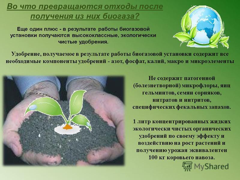 Во что превращаются отходы после получения из них биогаза? Еще один плюс - в результате работы биогазовой установки получаются высококлассные, экологически чистые удобрения. Удобрение, получаемое в результате работы биогазовой установки содержит все