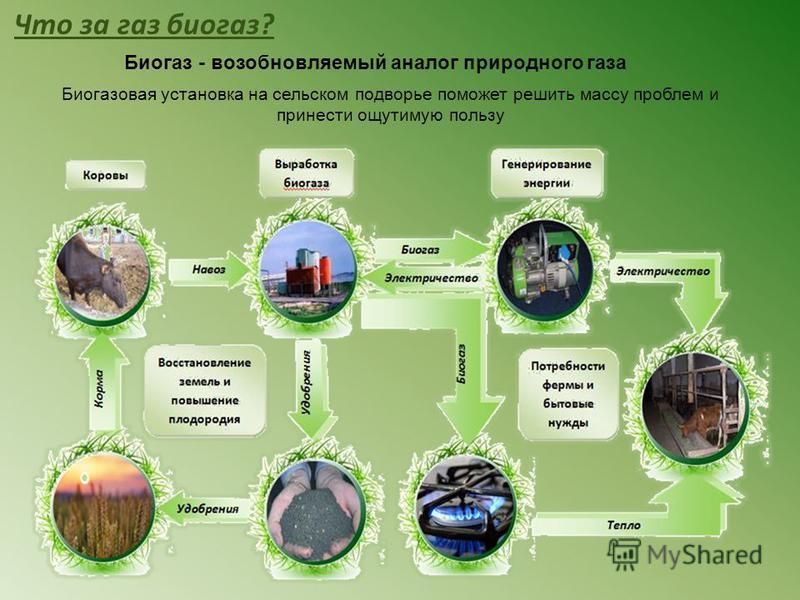 Биогаз - возобновляемый аналог природного газа Что за газ биогаз? Биогазовая установка на сельском подворье поможет решить массу проблем и принести ощутимую пользу