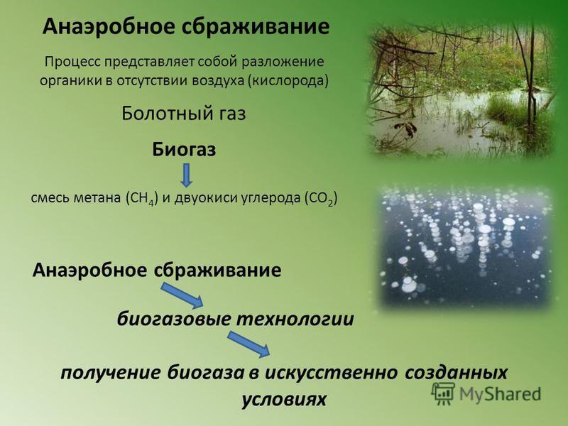 получение биогаза в искусственно созданных условиях Анаэробное сбраживание Процесс представляет собой разложение органики в отсутствии воздуха (кислорода) Болотный газ Биогаз смесь метана (CH 4 ) и двуокиси углерода (CO 2 ) Анаэробное сбраживание био