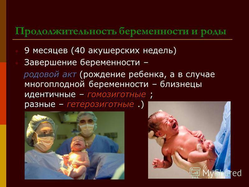 Продолжительность беременности и роды 9 месяцев (40 акушерских недель) Завершение беременности – родовой акт идентичные – гомозиготные ; разные – гетерозиготные родовой акт (рождение ребенка, а в случае многоплодной беременности – близнецы идентичные