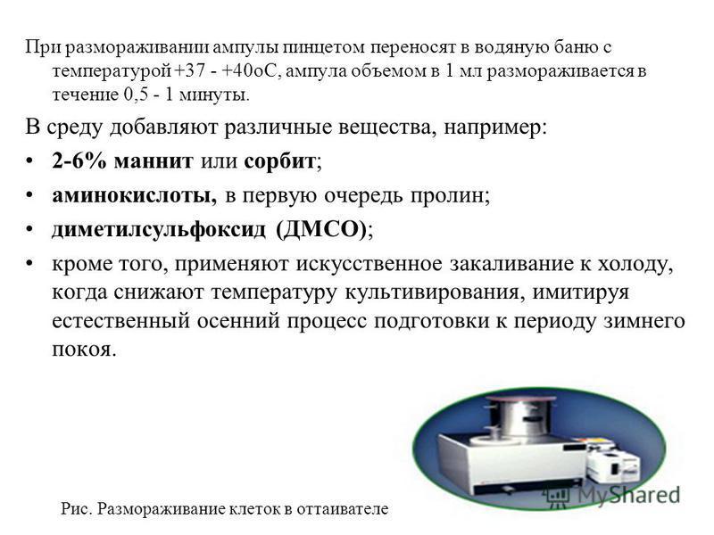 При размораживании ампулы пинцетом переносят в водяную баню с температурой +37 - +40 оС, ампула объемом в 1 мл размораживается в течение 0,5 - 1 минуты. В среду добавляют различные вещества, например: 2-6% маннит или сорбит; аминокислоты, в первую оч