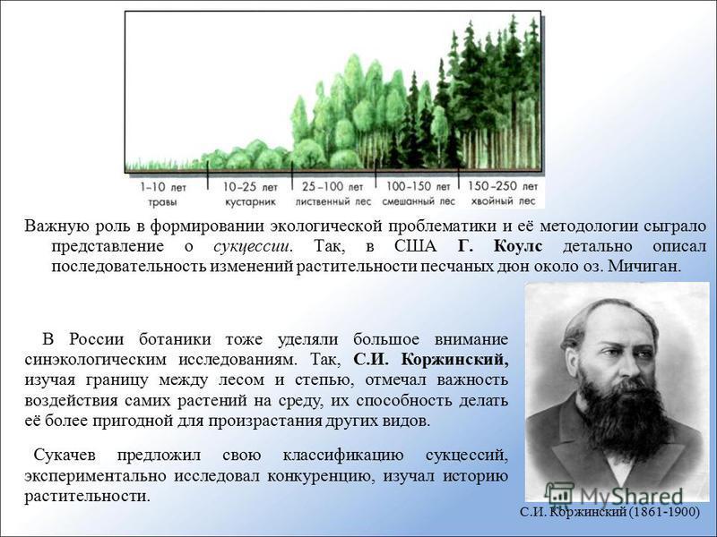 Важную роль в формировании экологической проблематики и её методологии сыграло представление о сукцессии. Так, в США Г. Коулс детально описал последовательность изменений растительности песчаных дюн около оз. Мичиган. В России ботаники тоже уделяли б