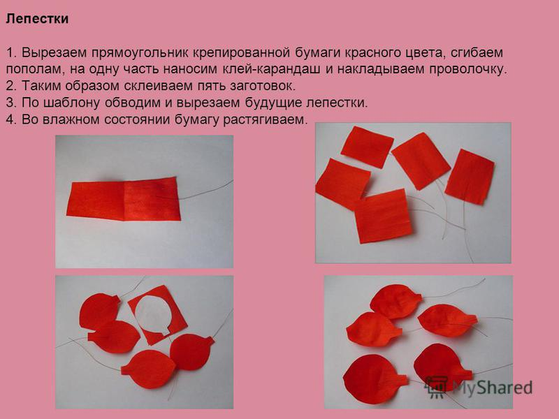 Лепестки 1. Вырезаем прямоугольник крепированной бумаги красного цвета, сгибаем пополам, на одну часть наносим клей-карандаш и накладываем проволочку. 2. Таким образом склеиваем пять заготовок. 3. По шаблону обводим и вырезаем будущие лепестки. 4. Во