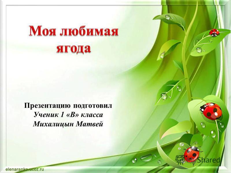Презентацию подготовил Ученик 1 «В» класса Михалицын Матвей