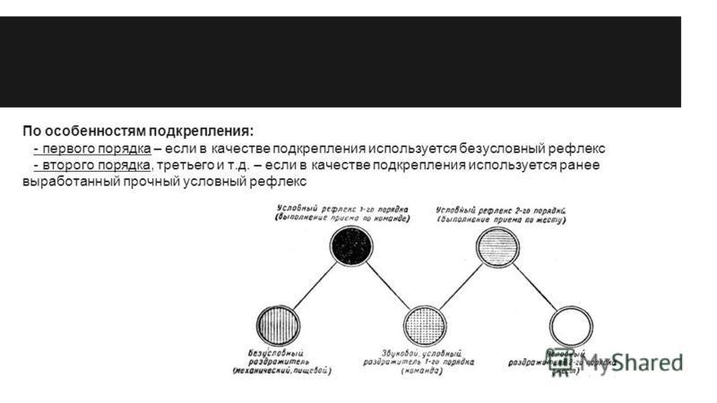 По особенностям подкрепления: - первого порядка – если в качестве подкрепления используется безусловный рефлекс - второго порядка, третьего и т.д. – если в качестве подкрепления используется ранее выработанный прочный условный рефлекс