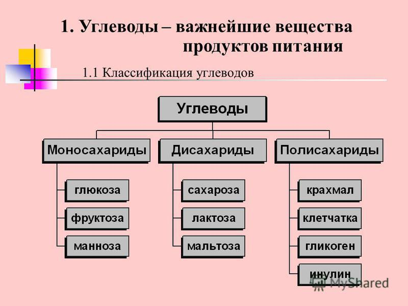 1.1 Классификация углеводов 1. Углеводы – важнейшие вещества продуктов питания