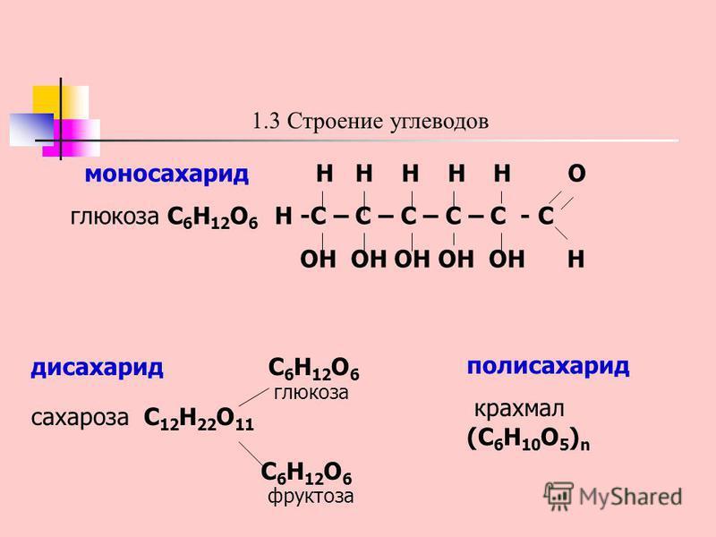 1.3 Строение углеводов моносахарид H H H H H O глюкоза C 6 H 12 O 6 H -C – C – C – C – C - C OH OH OH OH OH H дисахарид C 6 H 12 O 6 глюкоза сахароза C 12 H 22 O 11 C 6 H 12 O 6 фруктоза полисахарид крахмал (C 6 H 10 O 5 ) n
