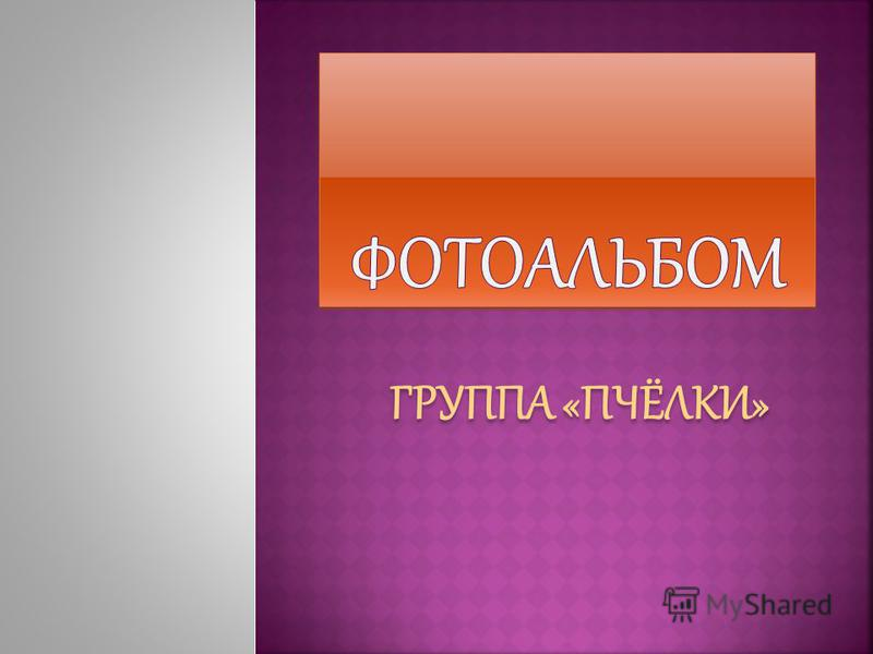 ГРУППА «ПЧЁЛКИ»