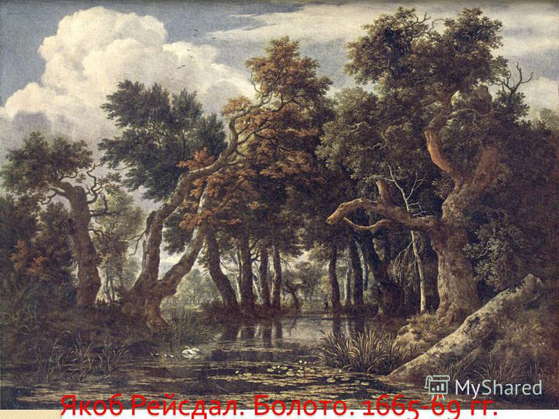 Якоб Рейсдал. Болото. 1665-69 гг.