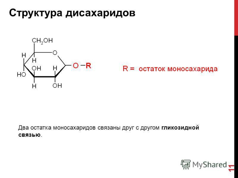 Структура дисахаридов 11 Два остатка моносахаридов связаны друг с другом гликозидной связью.