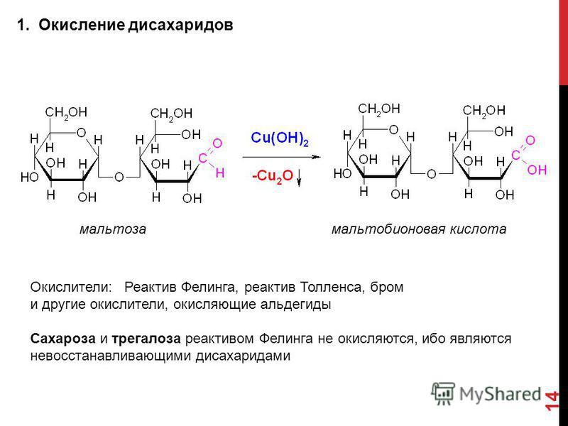 1. Окисление дисахаридов 14 мальтоза мальтобионовая кислота Окислители: Реактив Фелинга, реактив Толленса, бром и другие окислители, окисляющие альдегиды Сахароза и трегалоза реактивом Фелинга не окисляются, ибо являются невосстанавливающимся дисахар