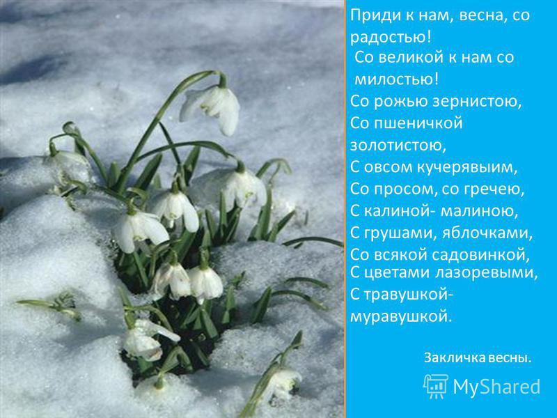Приди к нам, весна, со радостью! Со великой к нам со милостью! Со рожью зернистою, Со пшеничкой золотистою, С овсом кучерявыми, Со просом, со гречею, С калиной- малиною, С грушами, яблочками, Со всякой садовинкой, С цветами лазоревыми, С травушкой- м