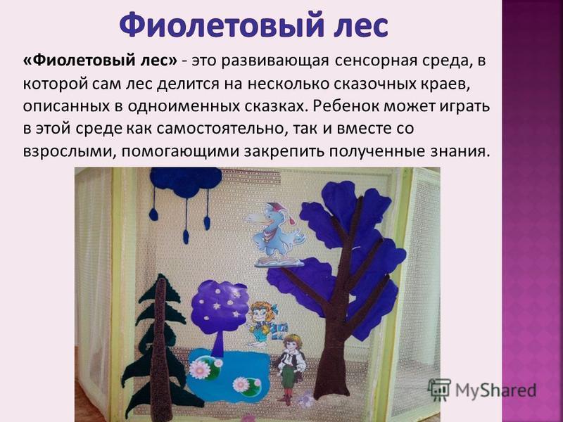 «Фиолетовый лес» - это развивающая сенсорная среда, в которой сам лес делится на несколько сказочных краев, описанных в одноименных сказках. Ребенок может играть в этой среде как самостоятельно, так и вместе со взрослыми, помогающими закрепить получе