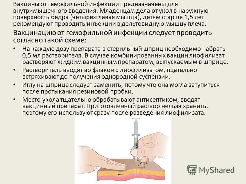 Вакцины от гемофильной инфекции предназначены для внутримышечного введения. Младенцам делают укол в наружную поверхность бедра (четырехглавая мышца), детям старше 1,5 лет рекомендуют проводить инъекции в дельтовидную мышцу плеча. Вакцинацию от гемофи