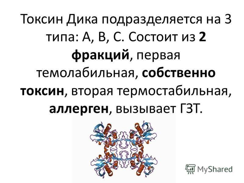 Токсин Дика подразделяется на 3 типа: А, В, С. Состоит из 2 фракций, первая термолабильная, собственно токсин, вторая термостабильная, аллерген, вызывает ГЗТ.