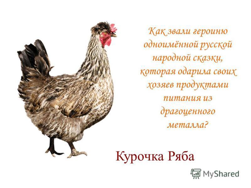 Как звали героиню одноимённой русской народной сказки, которая одарила своих хозяев продуктами питания из драгоценного металла? Курочка Ряба