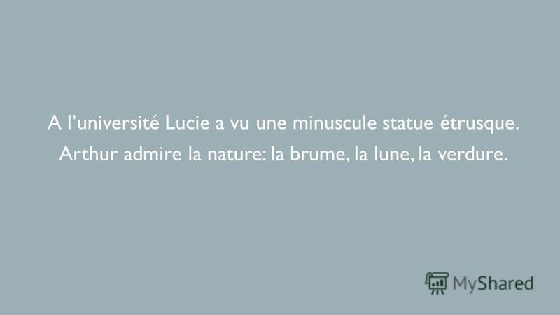 A luniversité Lucie a vu une minuscule statue étrusque. Arthur admire la nature: la brume, la lune, la verdure.