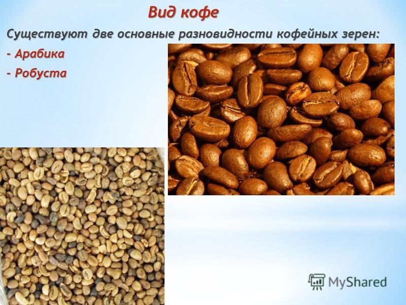 Вид кофе Вид кофе Существуют две основные разновидности кофейных зерен: - Арабика - Робуста