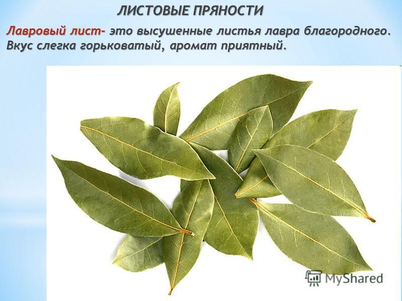 ЛИСТОВЫЕ ПРЯНОСТИ Лавровый лист- это высушенные листья лавра благородного. Вкус слегка горьковатый, аромат приятный.