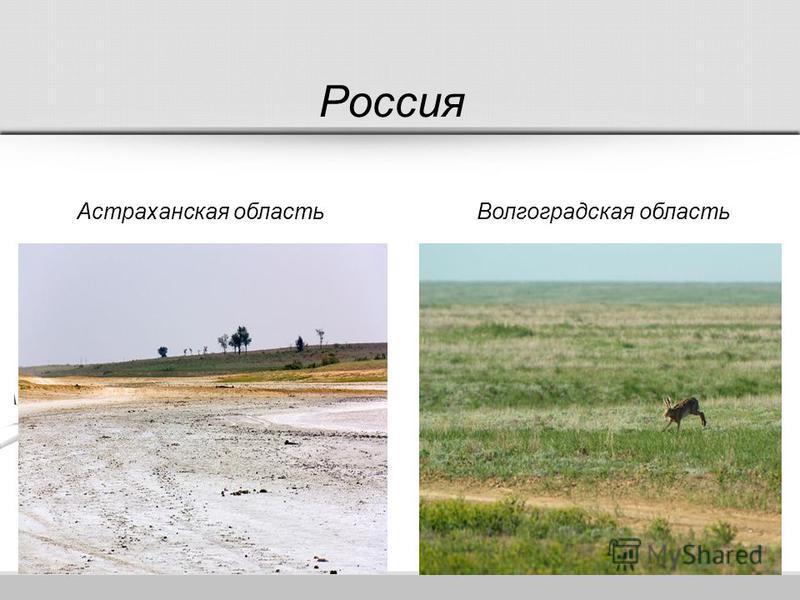 Россия Астраханская область Волгоградская область