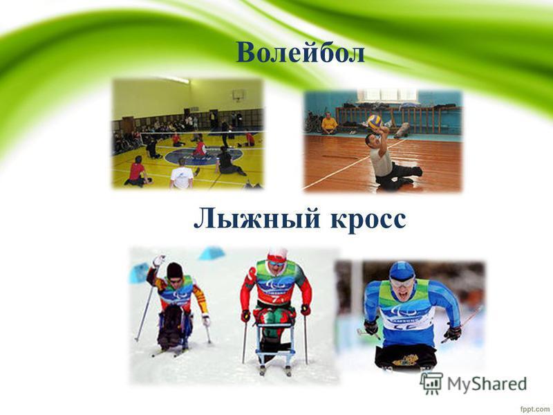Волейбол Лыжный кросс