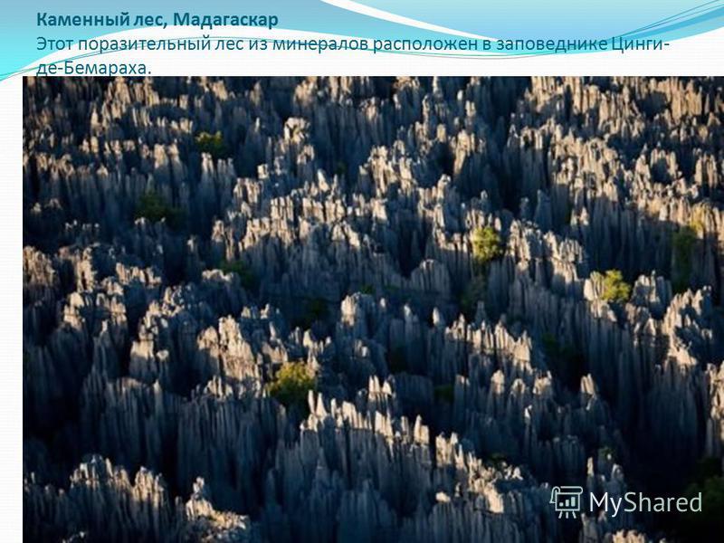 Каменный лес, Мадагаскар Этот поразительный лес из минералов расположен в заповеднике Цинги- де-Бемараха.