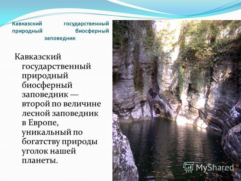 Кавказский государственный природный биосферный заповедник Кавказский государственный природный биосферный заповедник второй по величине лесной заповедник в Европе, уникальный по богатству природы уголок нашей планеты.