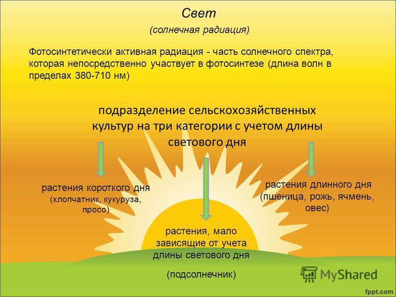 Свет (солнечная радиация) Фотосинтетически активная радиация - часть солнечного спектра, которая непосредственно участвует в фотосинтезе (длина волн в пределах 380-710 нм) подразделение сельскохозяйственных культур на три категории с учетом длины све