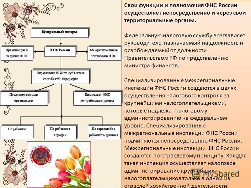 Свои функции и полномочия ФНС России осуществляет непосредственно и через свои территориальные органы. Федеральную налоговую службу возглавляет руководитель, назначаемый на должность и освобождаемый от должности Правительством РФ по представлению мин