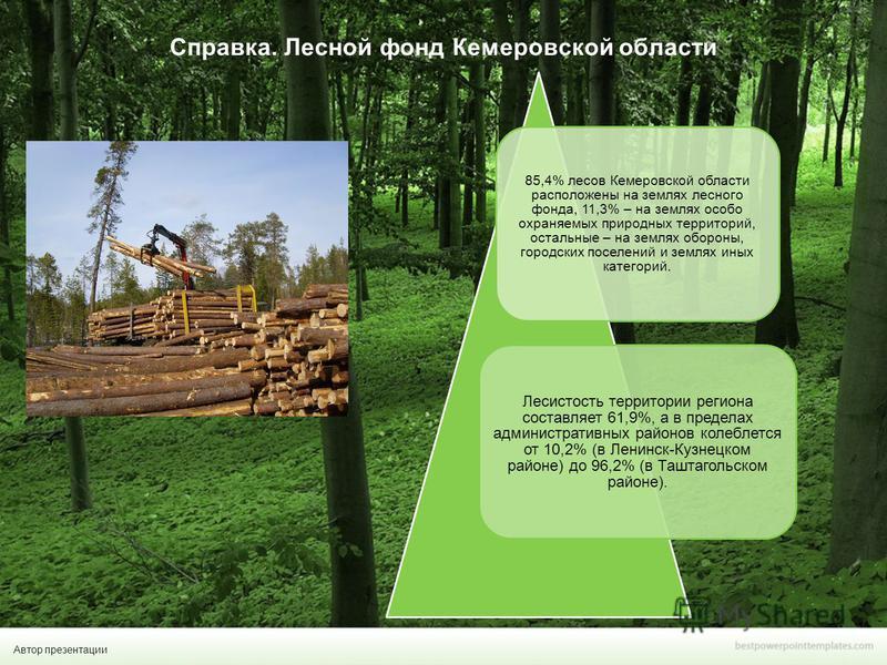 Автор презентации Справка. Лесной фонд Кемеровской области 85,4% лесов Кемеровской области расположены на землях лесного фонда, 11,3% – на землях особо охраняемых природных территорий, остальные – на землях обороны, городских поселений и землях иных