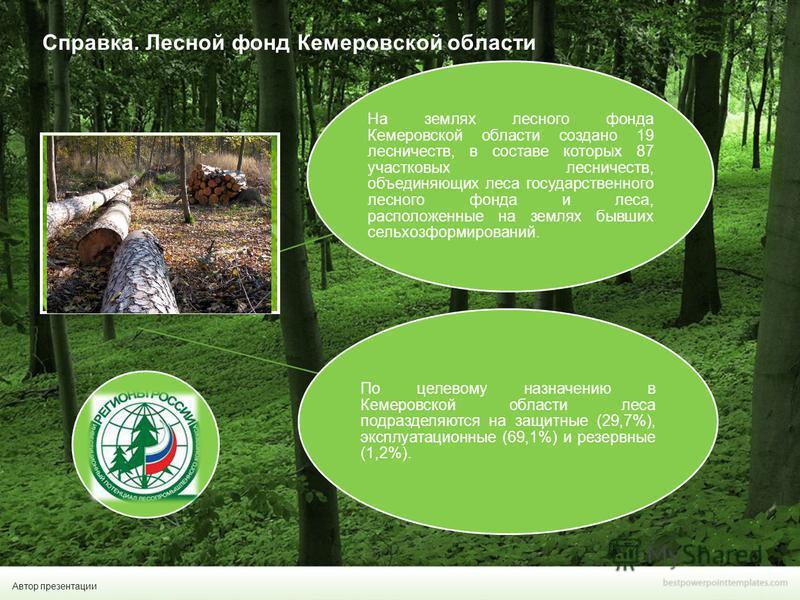 Автор презентации На землях лесного фонда Кемеровской области создано 19 лесничеств, в составе которых 87 участковых лесничеств, объединяющих леса государственного лесного фонда и леса, расположенные на землях бывших сельхоз формирований. По целевому