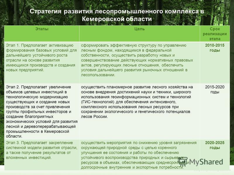 Стратегия развития лесопромышленного комплекса в Кемеровской области Этапы ЦельСрок реализации этапа Этап 1. Предполагает активизацию формирования базовых условий для дальнейшего устойчивого роста отрасли на основе развития имеющихся производств и со