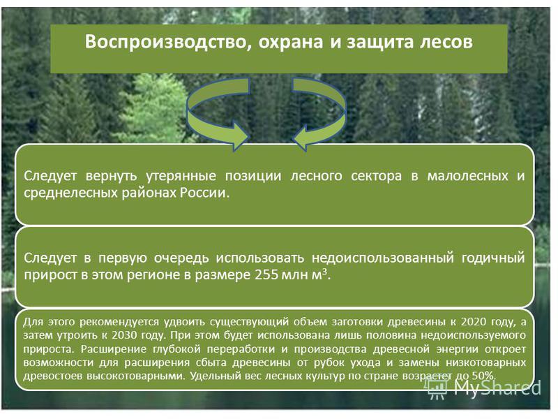 Воспроизводство, охрана и защита лесов Следует вернуть утерянные позиции лесного сектора в малолесных и средне лесных районах России. Следует в первую очередь использовать недоиспользованный годичный прирост в этом регионе в размере 255 млн м 3. Для