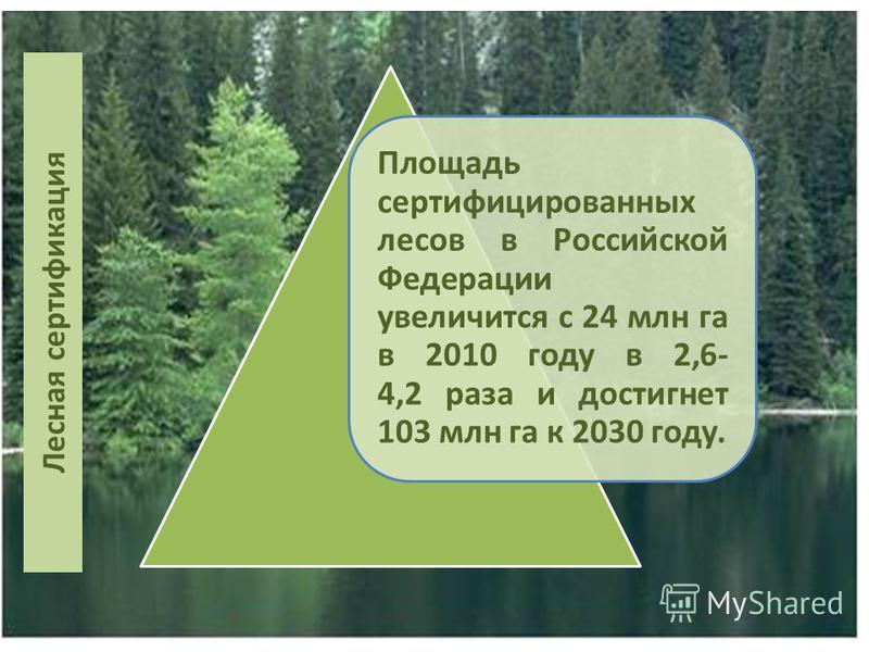 Лесная сертификация Площадь сертифицированных лесов в Российской Федерации увеличится с 24 млн га в 2010 году в 2,6- 4,2 раза и достигнет 103 млн га к 2030 году.