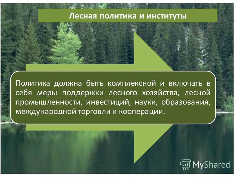 Лесная политика и институты Политика должна быть комплексной и включать в себя меры поддержки лесного хозяйства, лесной промышленности, инвестиций, науки, образования, международной торговли и кооперации.