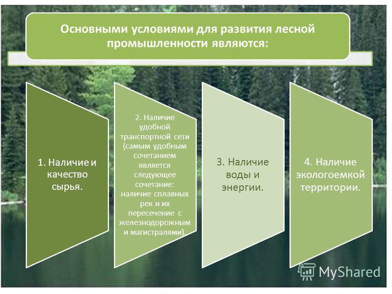Основными условиями для развития лесной промышленности являются: 1. Наличие и качество сырья. 2. Наличие удобной транспортной сети (самым удобным сочетанием является следующее сочетание: наличие сплавных рек и их пересечение с железнодорожным и магис