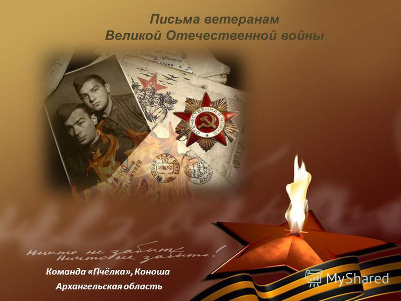 Письма ветеранам Великой Отечественной войны Команда «Пчёлка», Коноша Архангельская область