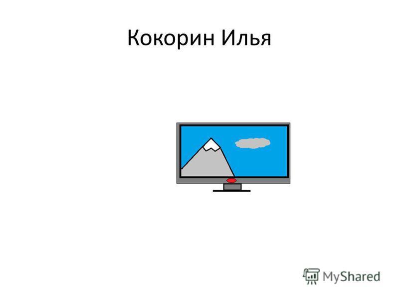 Кокорин Илья