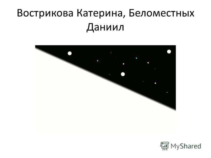 Вострикова Катерина, Беломестных Даниил