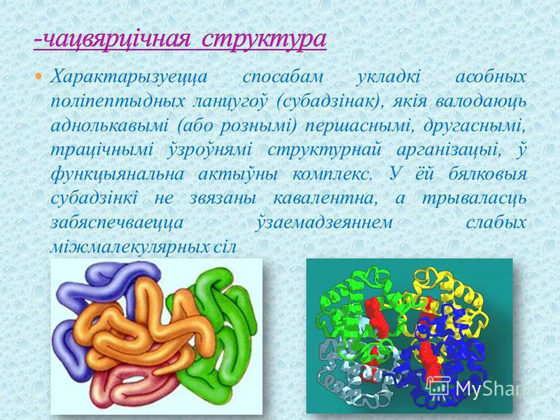 Характарызуецца спосабам укладкі асобных поліпептыдных ланцугоў (субадзінак), якія валодаюць аднолькавымі (або рознымі) першаснымі, другаснымі, трацічнымі ўзроўнямі структурнай арганізацыі, ў функцыянальна актыўны комплекс. У ёй бялковыя субадзінкі н