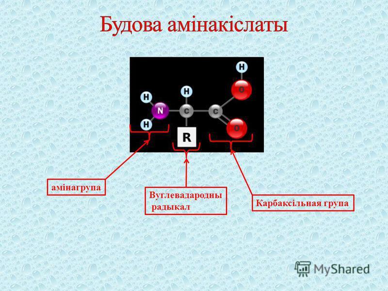 амінагрупа Карбаксільная група Вуглевадародны радыкал