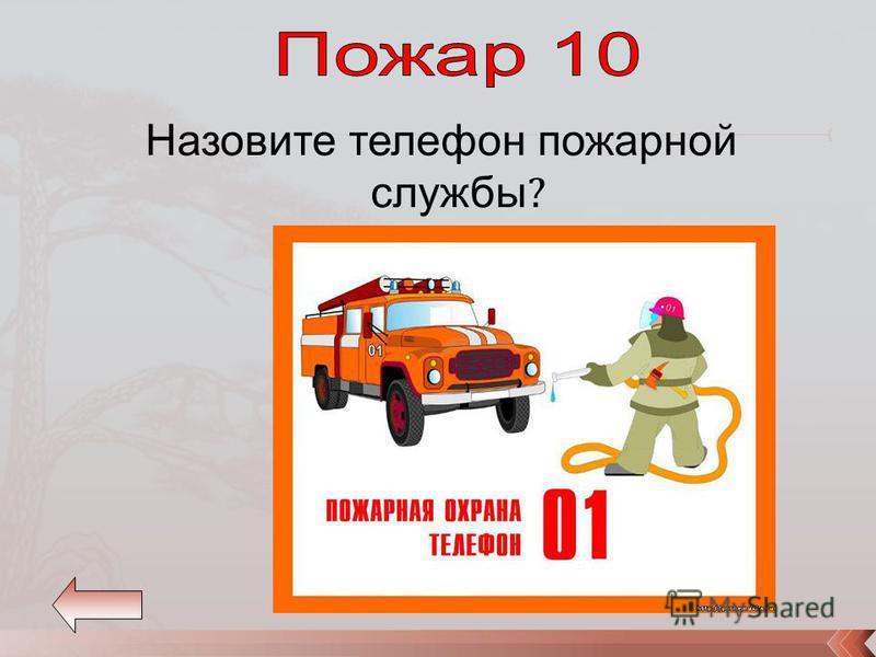 Назовите телефон пожарной службы ?