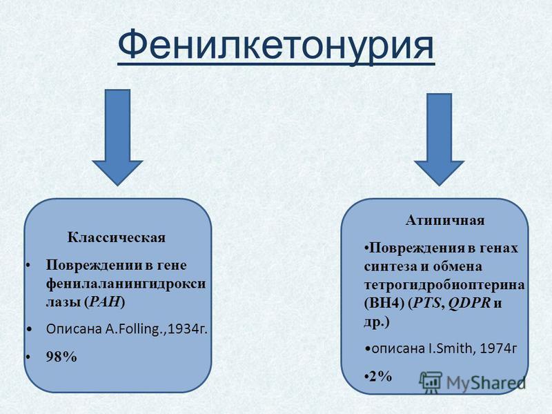 Фенилкетонурия Классическая Повреждении в гене фенилаланингидрокси лазы (PAH) Описана А.Folling.,1934 г. 98% Атипичная Повреждения в генах синтеза и обмена тетрогидробиоптерина (ВН4) (PTS, QDPR и др.) описана I.Smith, 1974 г 2%