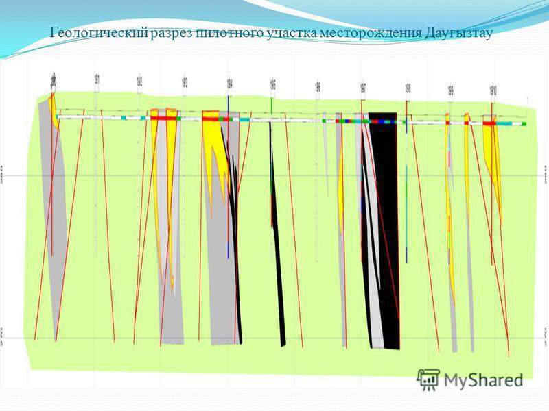 Геологический разрез пилотного участка месторождения Даугызтау