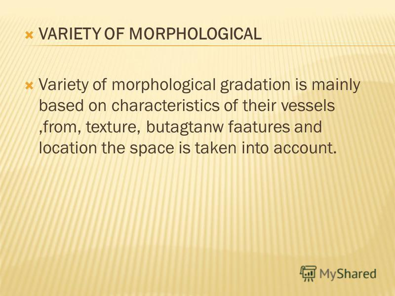 VARIETY OF MORPHOLOGICAL Variety of morphological gradation is mainly based on characteristics of their vessels,from, texture, butagtanw faatures and location the space is taken into account.